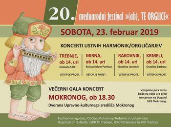 "20. mednarodni festivall ""(ah), TE ORGLICE"""