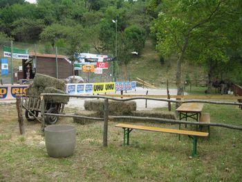 Prve dirke z osli so se odvijale že leta 1976