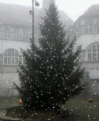 """""""Nori december"""" na gradu na Tratah, 17. 12. 2016"""