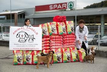 Z donacijo hrane osrečili štirinožne varovance treh društev za zaščito živali