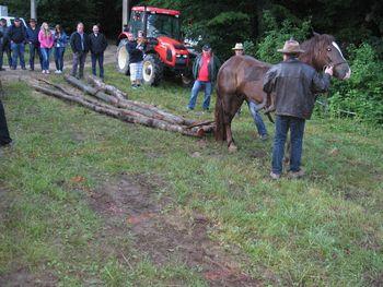 VABILO na spretnostne igre konjenikov na Plešivico in druženje