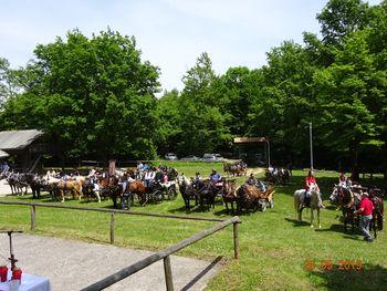 Blagoslov-žegnanje konj na Plešivici