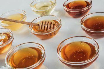 "Raznolikost okusov medu v ""medenem kotličku"""