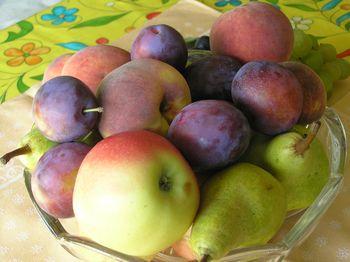 Zdrava, uravnotežena prehrana in telesna aktivnost – osnova za zdrav način življenja