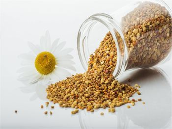 Cvetni prah – koristen dodatek naši prehrani