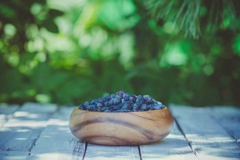 Nove priložnosti v pridelavi jagodičastega sadja