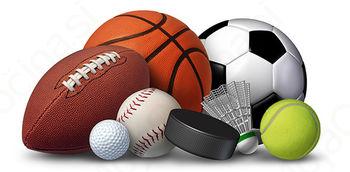 Sofinanciranje programov na področju športa v javnem interesu v Mestni občini Slovenj Gradec v letu 2016