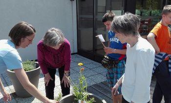 Zasadili smo prvi medgeneracijski vrt v Litiji!