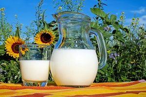 JAVNI POZIV lokalnim pridelovalcem in predelovalcem senenega mleka, sadja in jagodičevja ter izdelkov iz sadja, jagodičevja in senenega mleka za uvrstitev na seznam lokalnih ponudnikov
