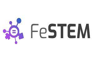 Vzpostavljena in delujoča nacionalna skupina projekta FeSTEM – »STEM MAKER tim«