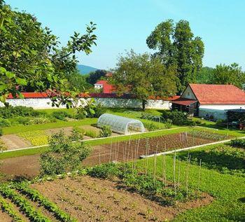 Zelenjavni vrt spomladi - strokovno predavanje MIŠE PUŠENJAK