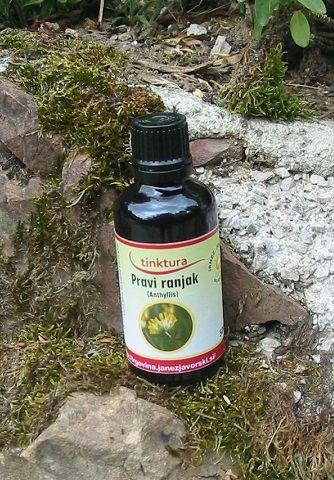 Tinktura iz ranjaka  50ml  (Anthyllis vulneraria)
