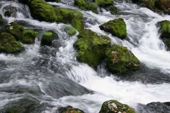 Fotografska razstava `Tečejo nam vode, teče nam čas´