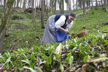 Grajska zeliščarska delavnica: ČEMAŽ
