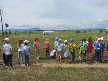 Otroci iz vrtca iz Selc na obisku v Cirkovcah