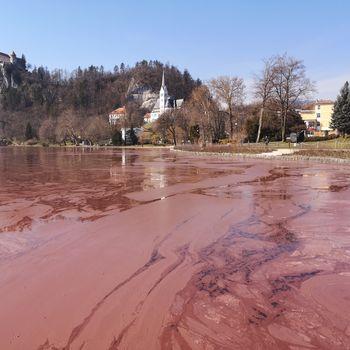Blejsko jezero: Odprto pismo državnemu zboru, vladi, predsedniku republike in državnemu svet!