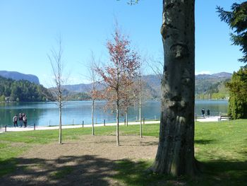 Blejsko jezero in svetovni dan voda
