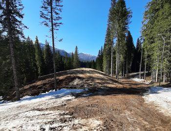 Opravljen spomladanski del priprav na IBU svetovno prvenstvo v biatlonu 2021 Pokljuka, shranjenega 19.000 kubičnih metrov snega