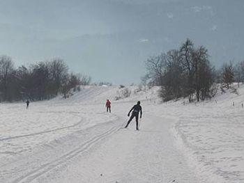 Tekaške proge na Bledu