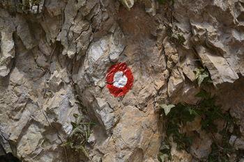 Planinsko orientacijsko tekmovanje v Gorenjsko-Dolenjski ligi