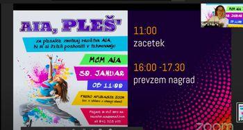 Virtualno tekmovanje AIA, Pleš'