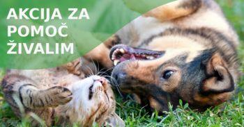 Dobrodelna akcija za pomoč živalim