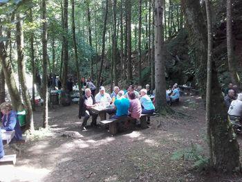 Piknik v Vintgarju