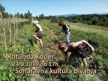 Otvoritev razstave Sonaravna kultura bivanja
