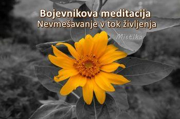 Bojevnikova meditacija