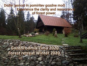 Gozdni odmik Zima 2020