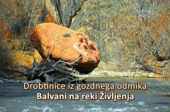 Drobtinice iz gozdnega odmika – Balvani na reki Življenja