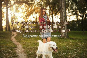 Mar pasji sprehajalci, rekreativci in podivjani otroci iz blokov nimajo pravice do gozdne kopeli?