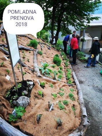 Medoviti vrt, delavnica z dr. Sabino Šegula