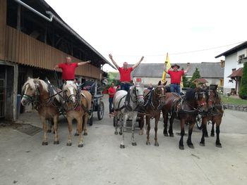 Konjeniški pohod na 20. praznik Občine Mirna Peč