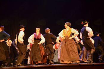 Območno srečanje otroških in odraslih folklornih skupin Domžale – Kamnik
