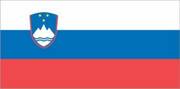 Državna zastava na častnem mestu