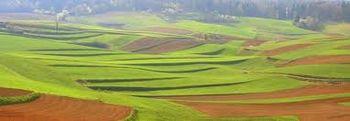 Obvestilo - odprt je javni razpis za kmetijstvo v letu 2017