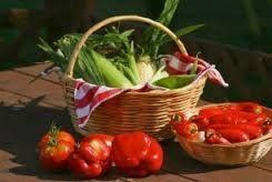 Povabilo za pogodbeno ekološko pridelavo in odkup