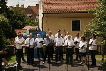 Moški pevski zbor Janko Kersnik na Igri rož v Kamniku