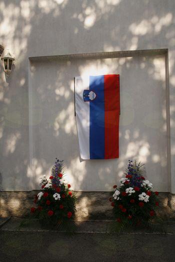 Šole na deželi morajo slovenske biti