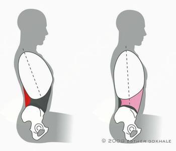 Bolečine v Hrbtu?