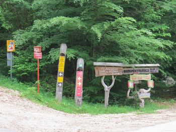 Popolna zapora gozdne ceste na Voje