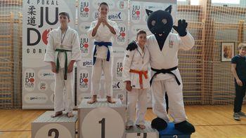Šest zlatih kolajn za judoiste v Gorici