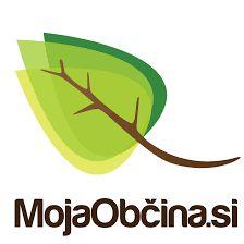 Statistika za spletno stran www.mojaobcina.si/brezovica za leto 2020