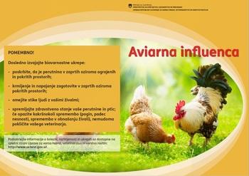 Pomembno obvestilo - AVIARNA INFLUENCA (ptičja gripa)