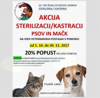 AKCIJA STERILIZACIJ IN KASTRACIJ PSOV IN MAČK JESEN 2017