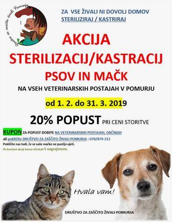 OBVESTILO: AKCIJA STERILIZACIJ/KASTRACIJ PSOV IN MAČK 2019