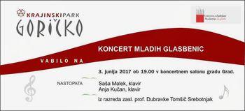 Koncert Anje Kučan v koncertnem salonu gradu Grad