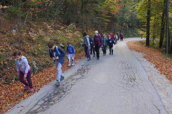 Šolski izlet na goro Oljko