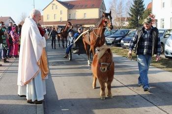 Blagoslov konjev v Križevcih